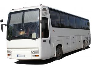 Buses To and From Napier